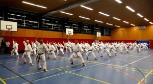 KarateGuppeP1340342